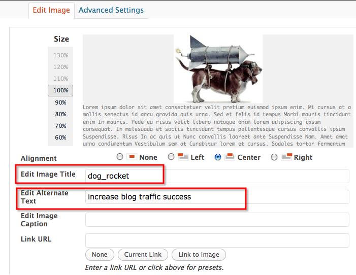 onpage search engine optimization factor alt tag