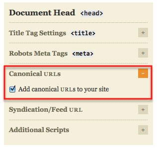 canonical url in thesis