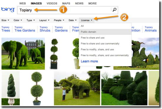 bing free image search usage rights