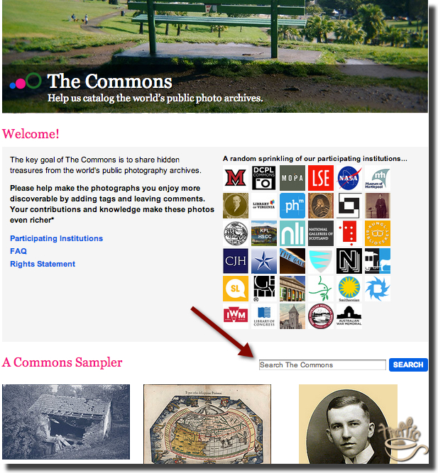 how to find flickr commons free blog images