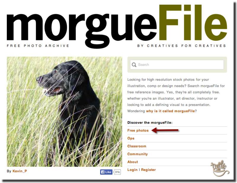 morguefile free blog images