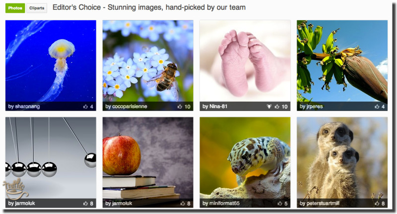 pixabay free images editor choice