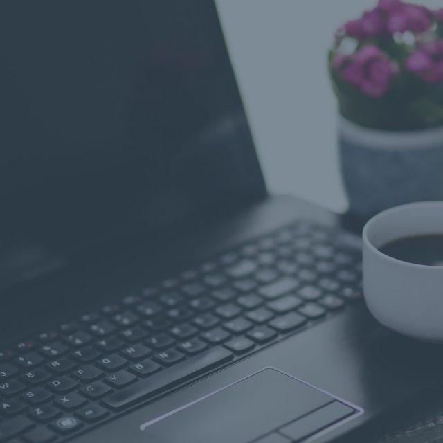 website traffic from wordpress ping